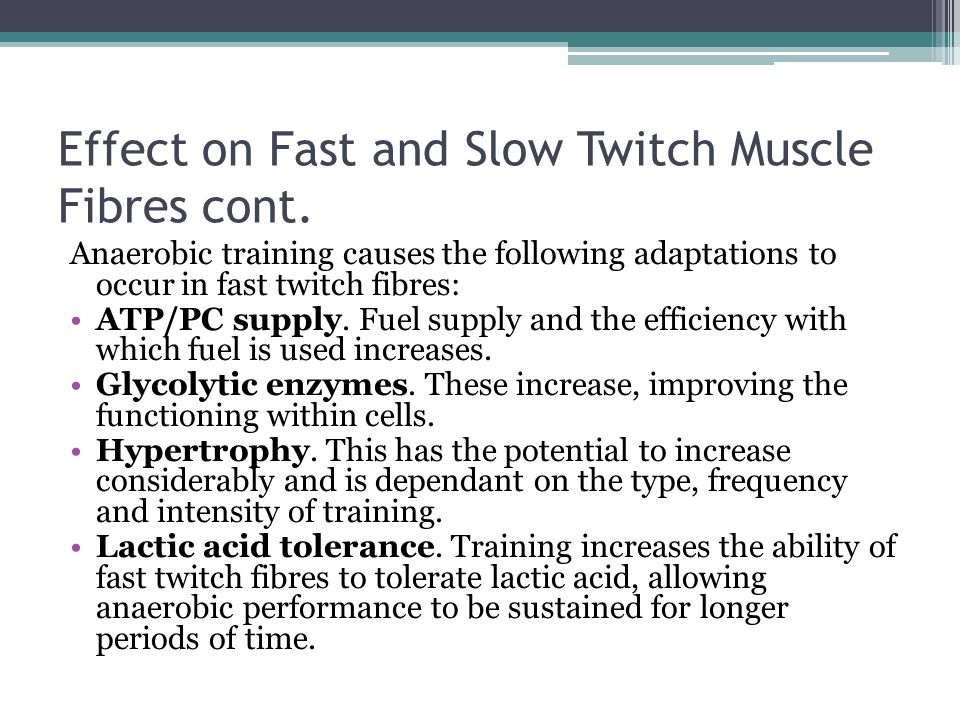 Effect on Fast and Slow Twitch Muscle Fibres cont.