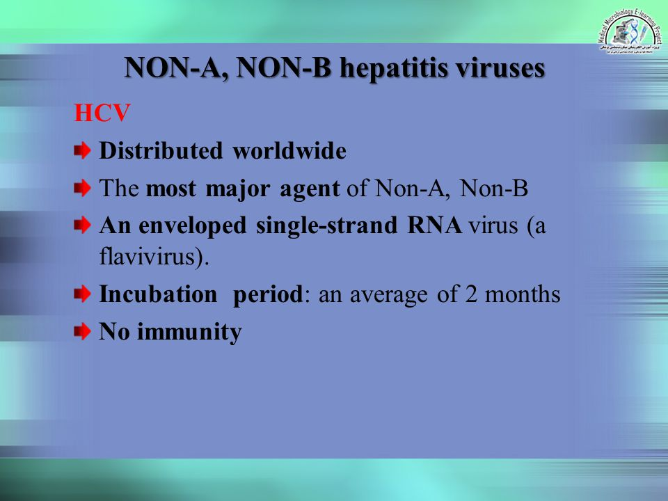 NON-A, NON-B hepatitis viruses