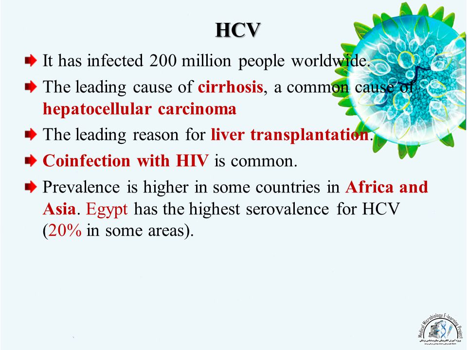 HCV It has infected 200 million people worldwide.