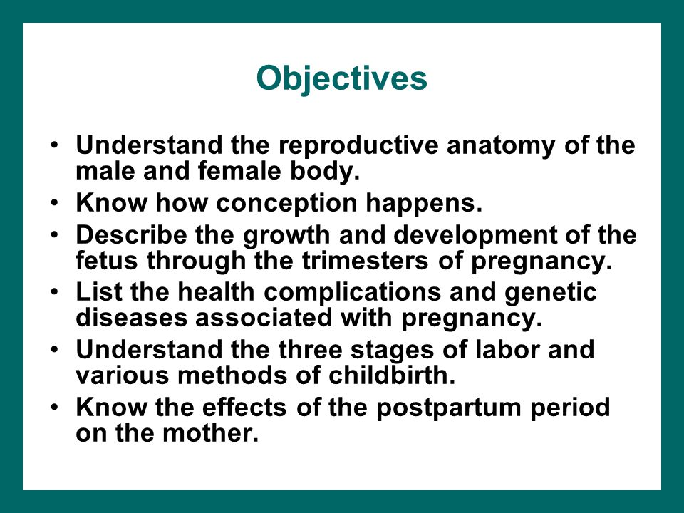 Conception, Pregnancy, and Childbirth - ppt video online download