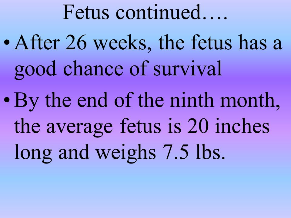 Fetus continued…. After 26 weeks, the fetus has a good chance of survival.