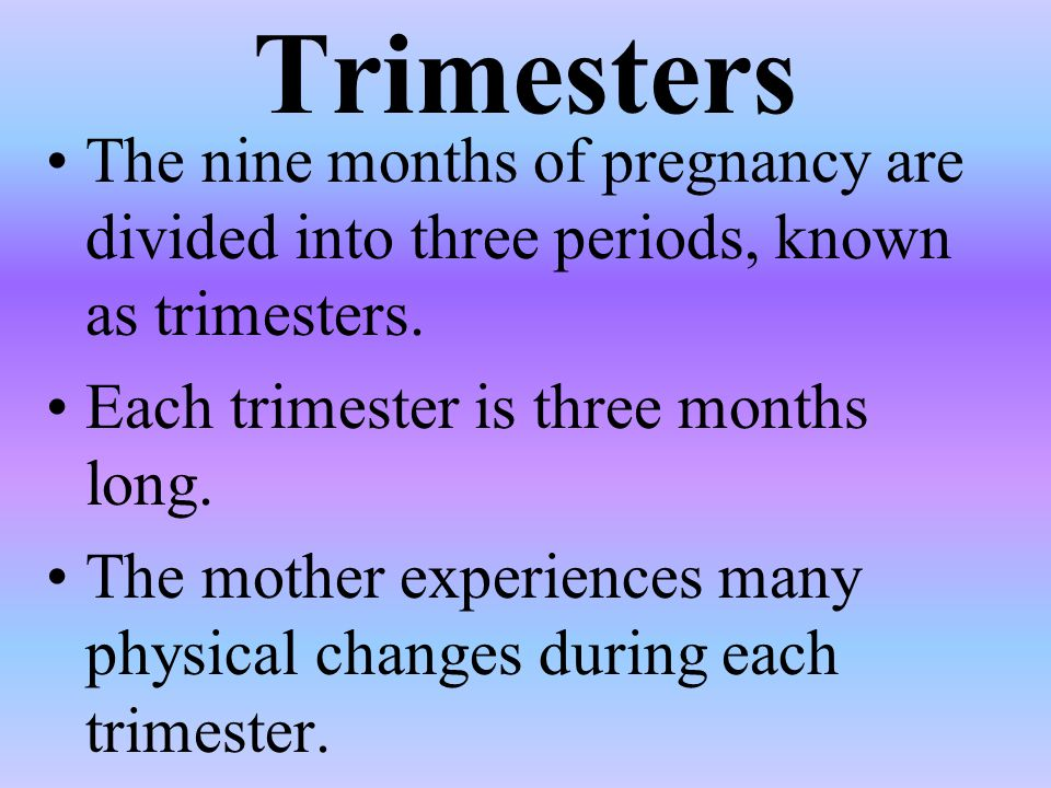 Trimesters The nine months of pregnancy are divided into three periods, known as trimesters. Each trimester is three months long.