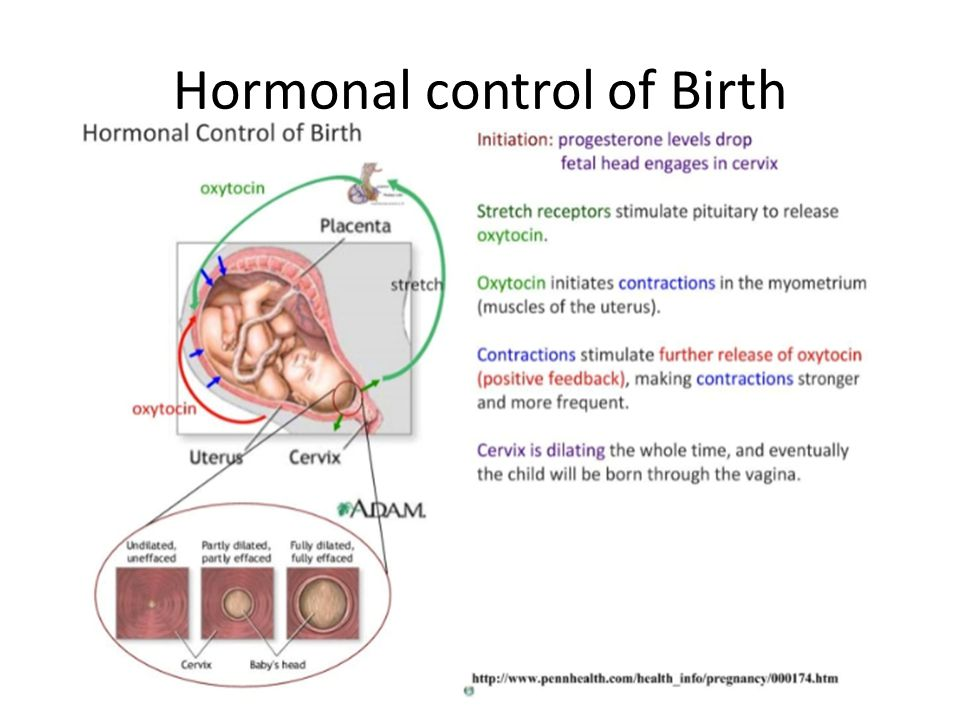 Hormonal control of Birth