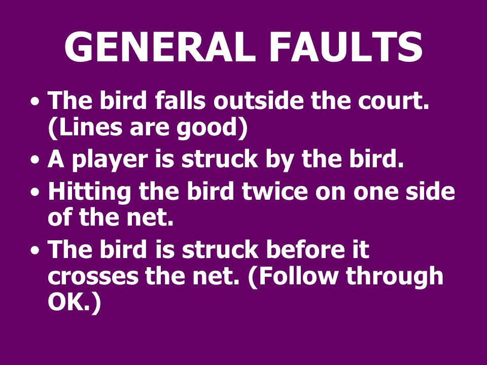 GENERAL FAULTS The bird falls outside the court. (Lines are good)