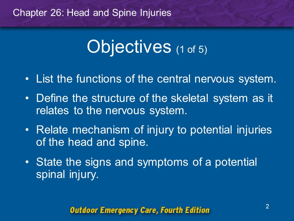 Objectives (1 of 5) List the functions of the central nervous system.