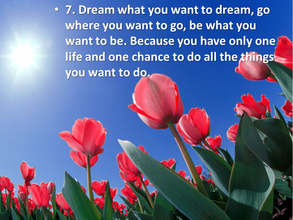 7. Dream what you want to dream, go where you want to go, be what you want to be.