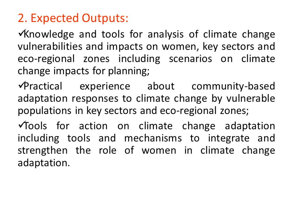 2. Expected Outputs: