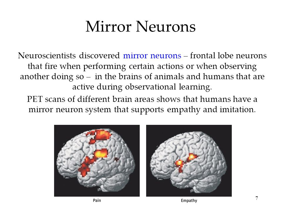 an experiment to determine the functions of mirror neurons These mirror neurons provide a direct internal experience, and therefore understanding, of another person's act, intention or emotion mirror neurons may also underlie the ability to imitate another's action, and.