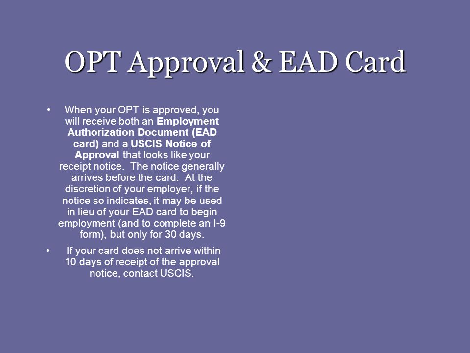 OPT Approval & EAD Card