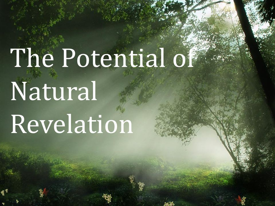 The Potential of Natural Revelation