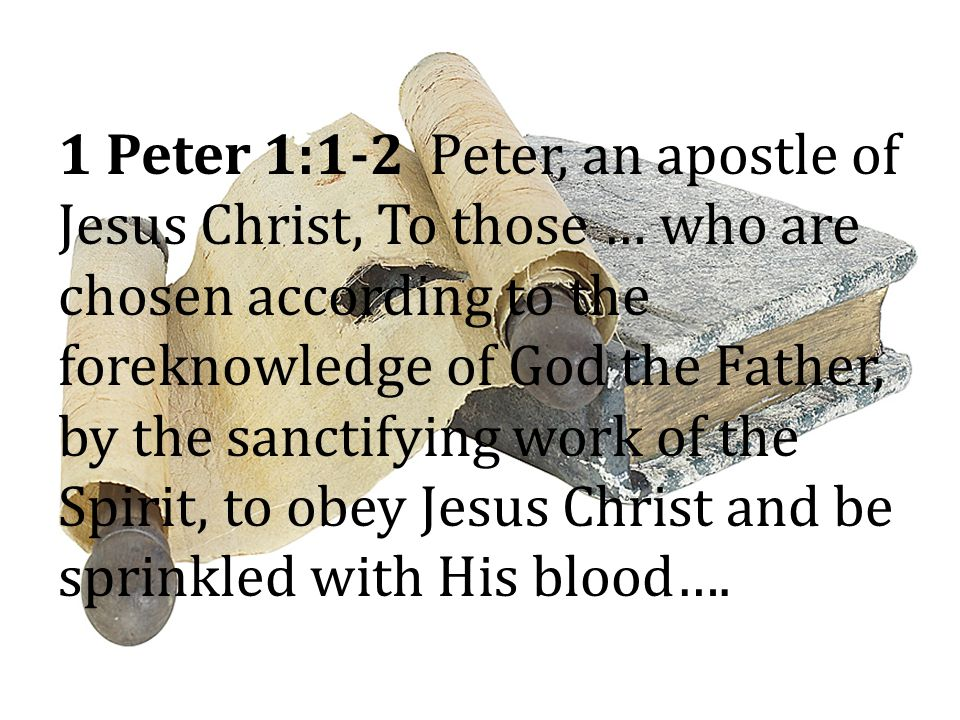 1 Peter 1:1-2 Peter, an apostle of Jesus Christ, To those … who are chosen according to the foreknowledge of God the Father, by the sanctifying work of the Spirit, to obey Jesus Christ and be sprinkled with His blood….