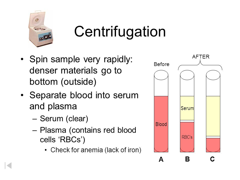 Centrifugation Spin sample very rapidly: denser materials go to bottom (outside) Separate blood into serum and plasma.
