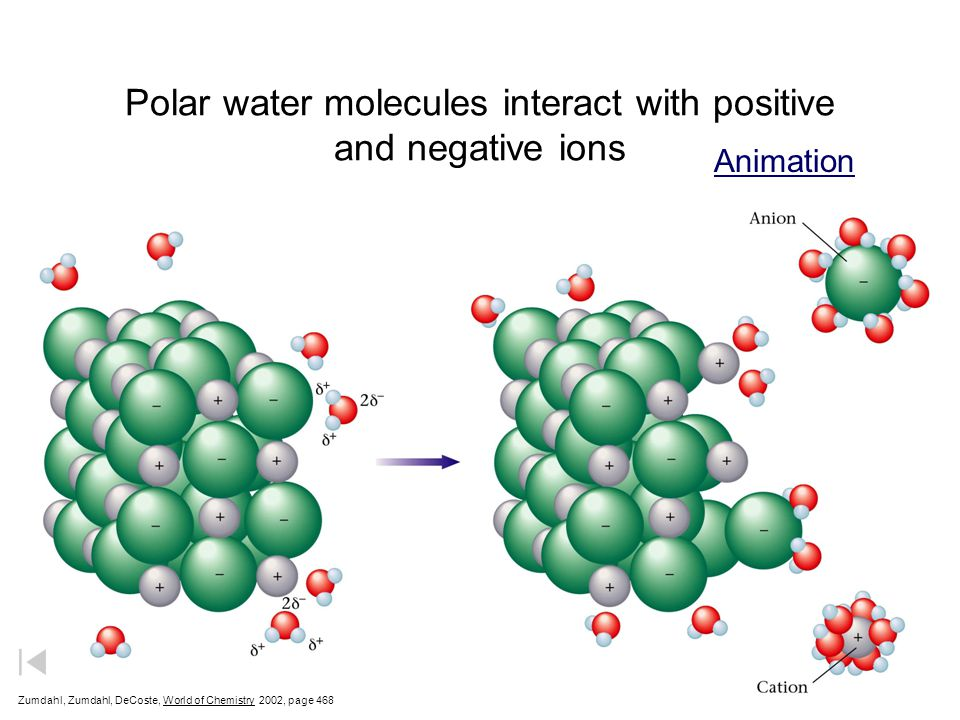 Polar water molecules interact with positive and negative ions