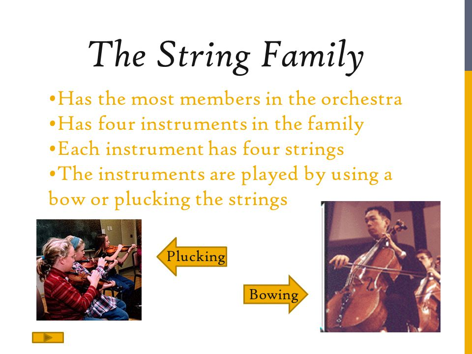 The String Family Has the most members in the orchestra
