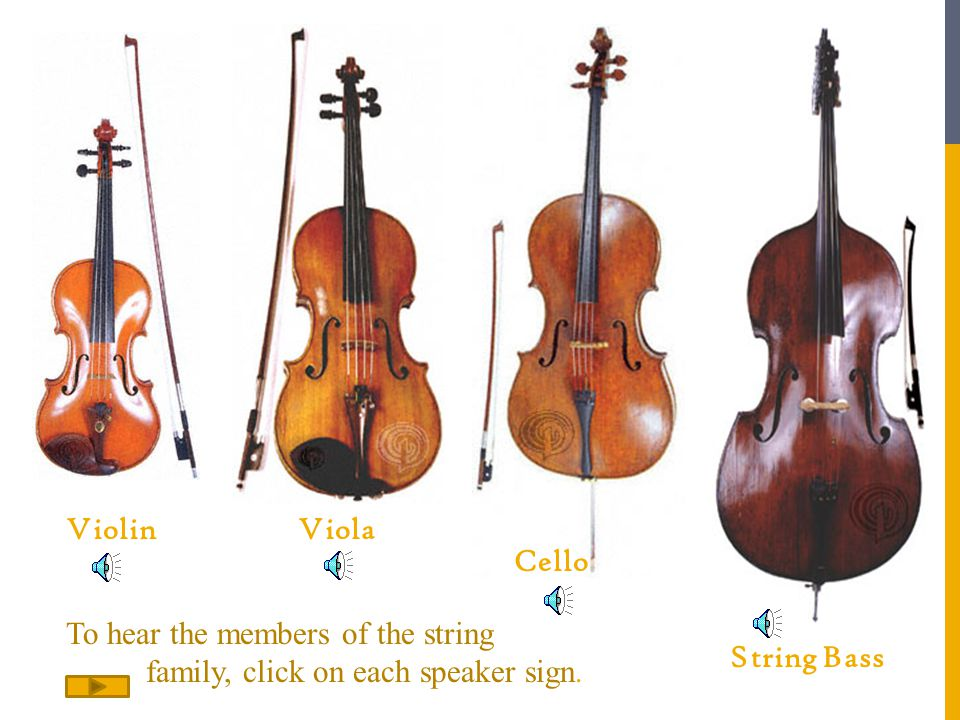 Violin Viola. Cello. To hear the members of the string.