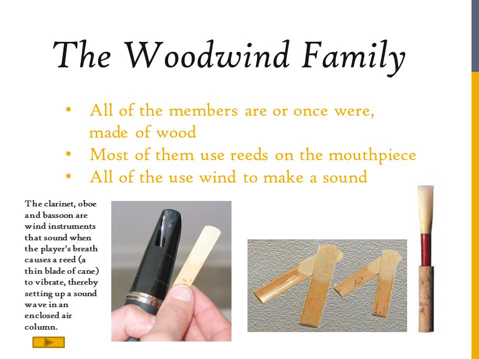 The Woodwind Family All of the members are or once were, made of wood