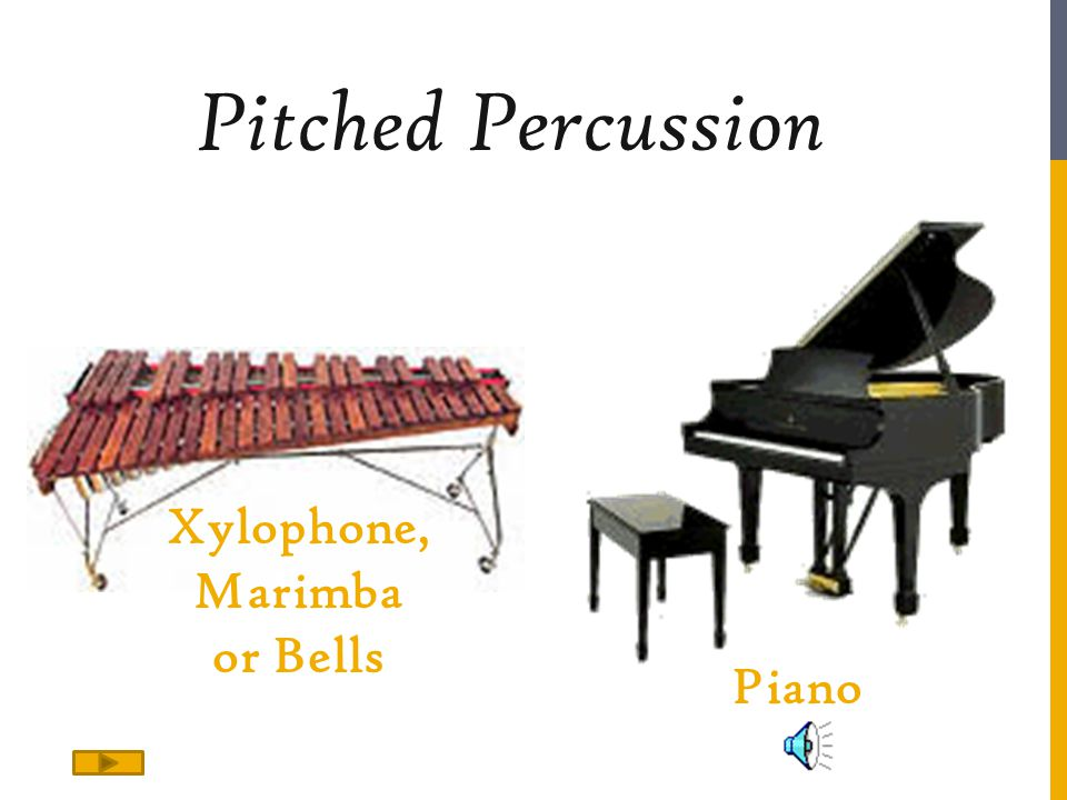 Pitched Percussion Xylophone, Marimba or Bells Piano