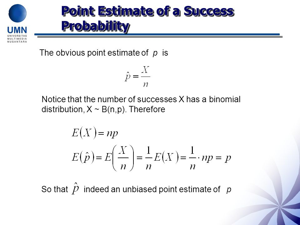 Point Estimate of a Success Probability