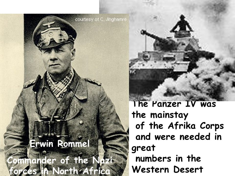 Commander of the Nazi forces in North Africa