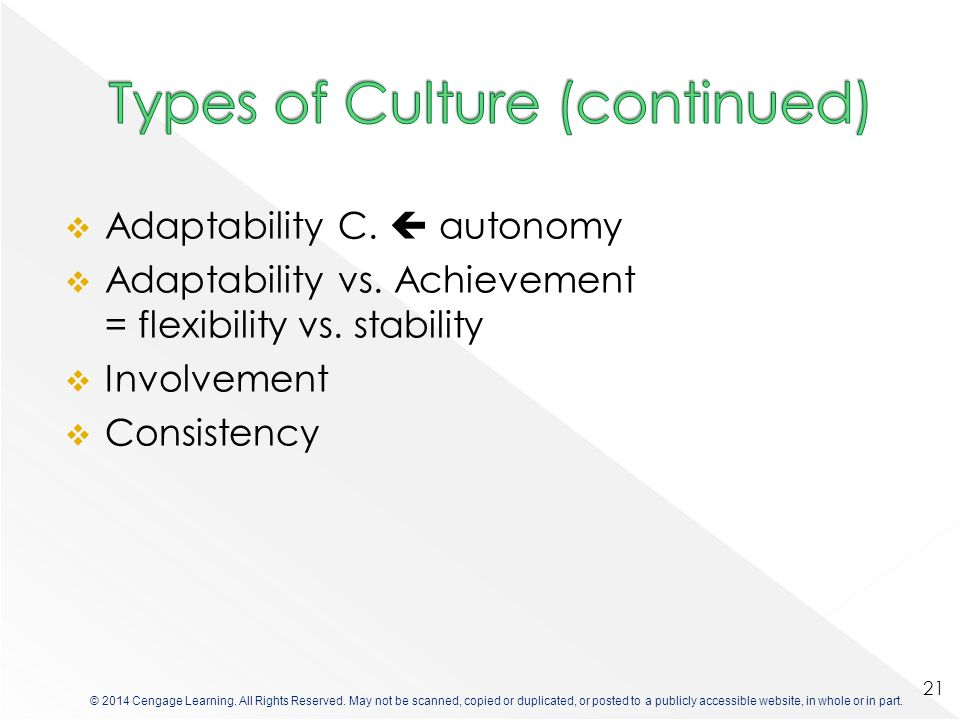 Types of Culture (continued)