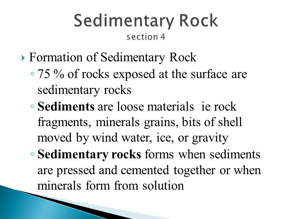 Sedimentary Rock section 4
