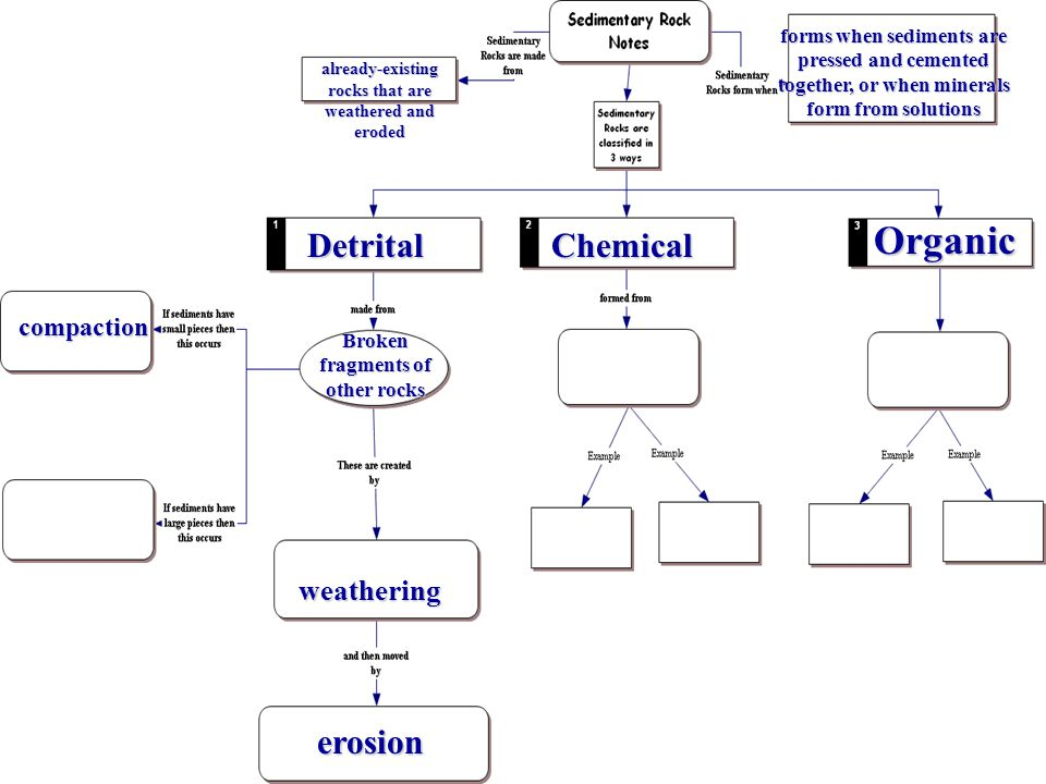 Organic Detrital Chemical erosion weathering compaction