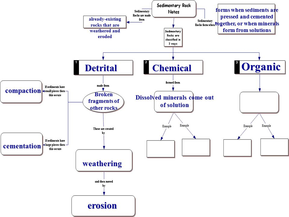 Organic Detrital Chemical erosion weathering compaction cementation
