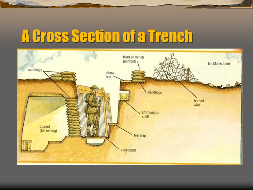Trench Warfare Ppt Download