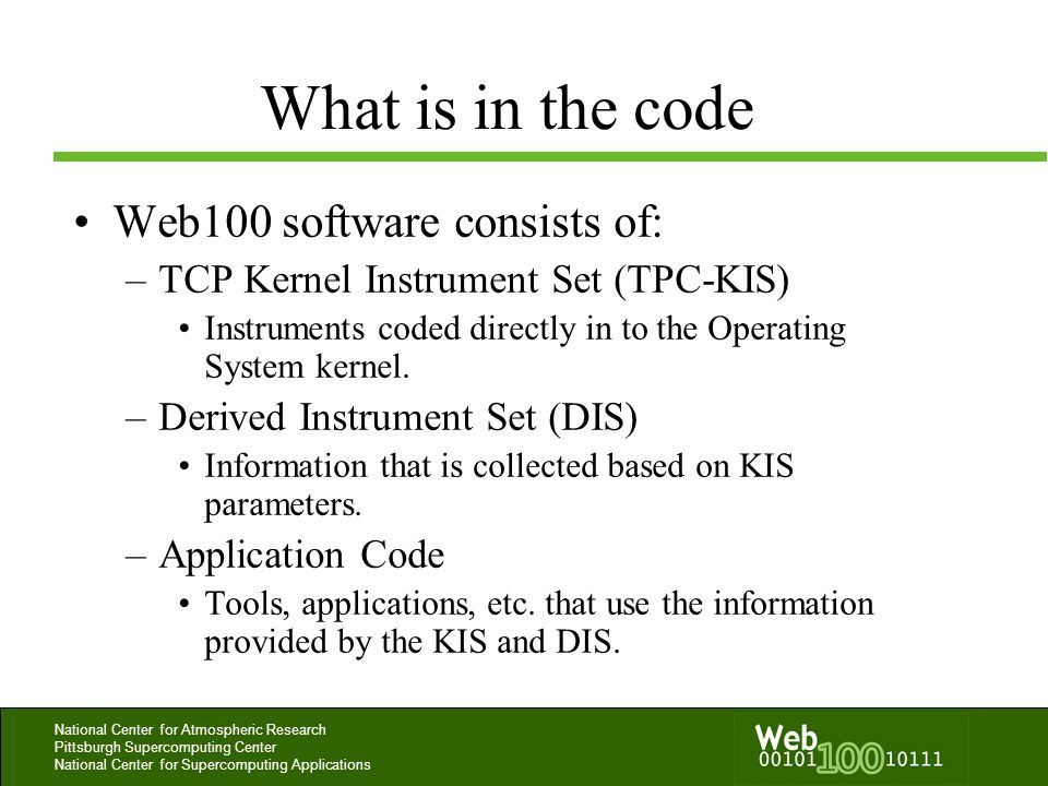 What is in the code Web100 software consists of: