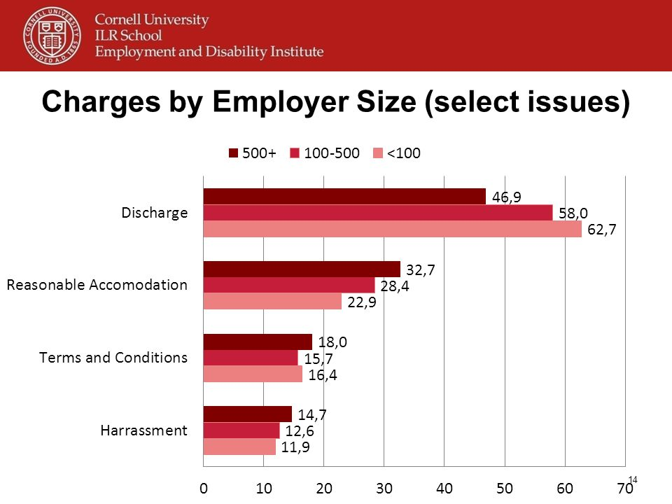 Charges by Employer Size (select issues)