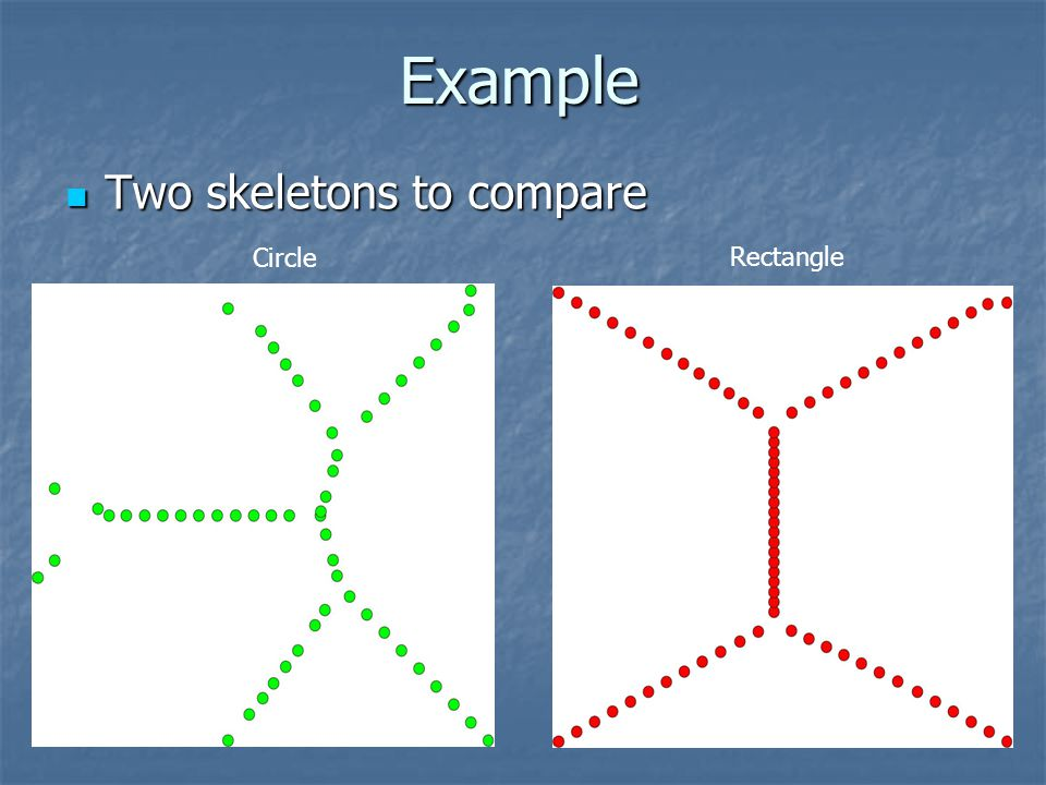 Example Two skeletons to compare Circle Rectangle