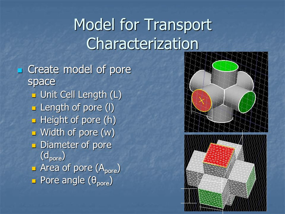 Model for Transport Characterization