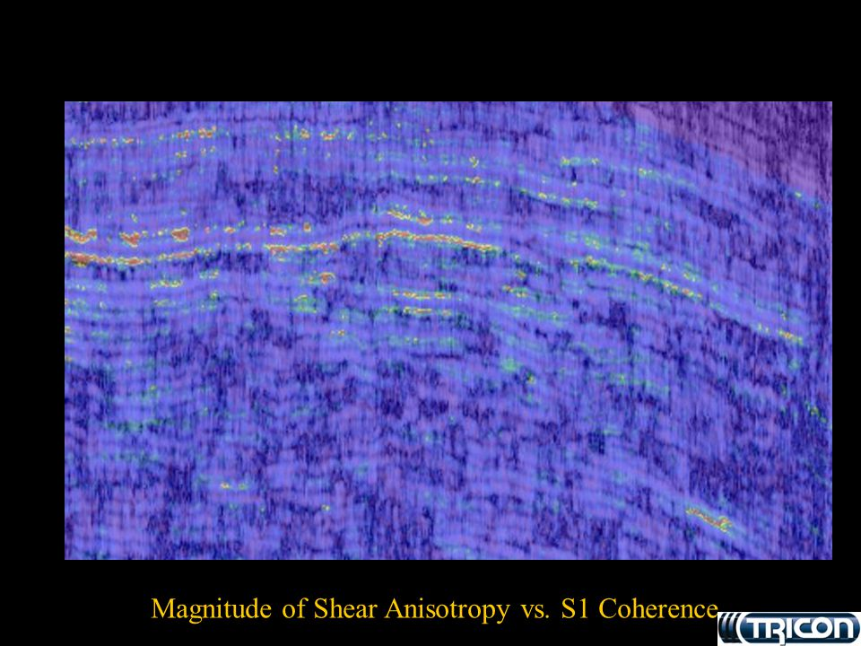 Magnitude of Shear Anisotropy vs. S1 Coherence