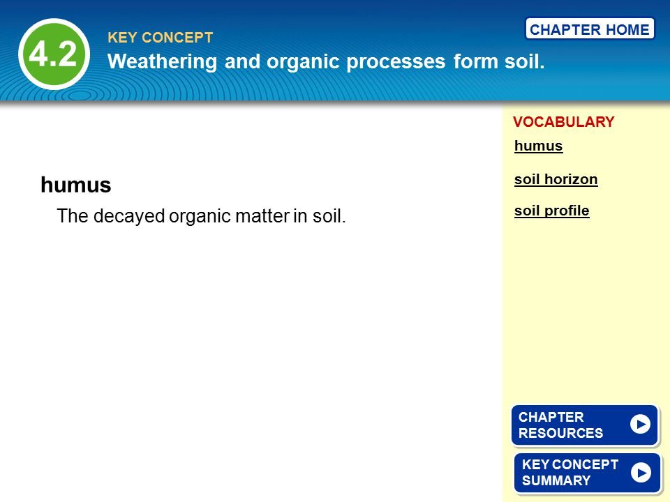 4.2 humus Weathering and organic processes form soil.