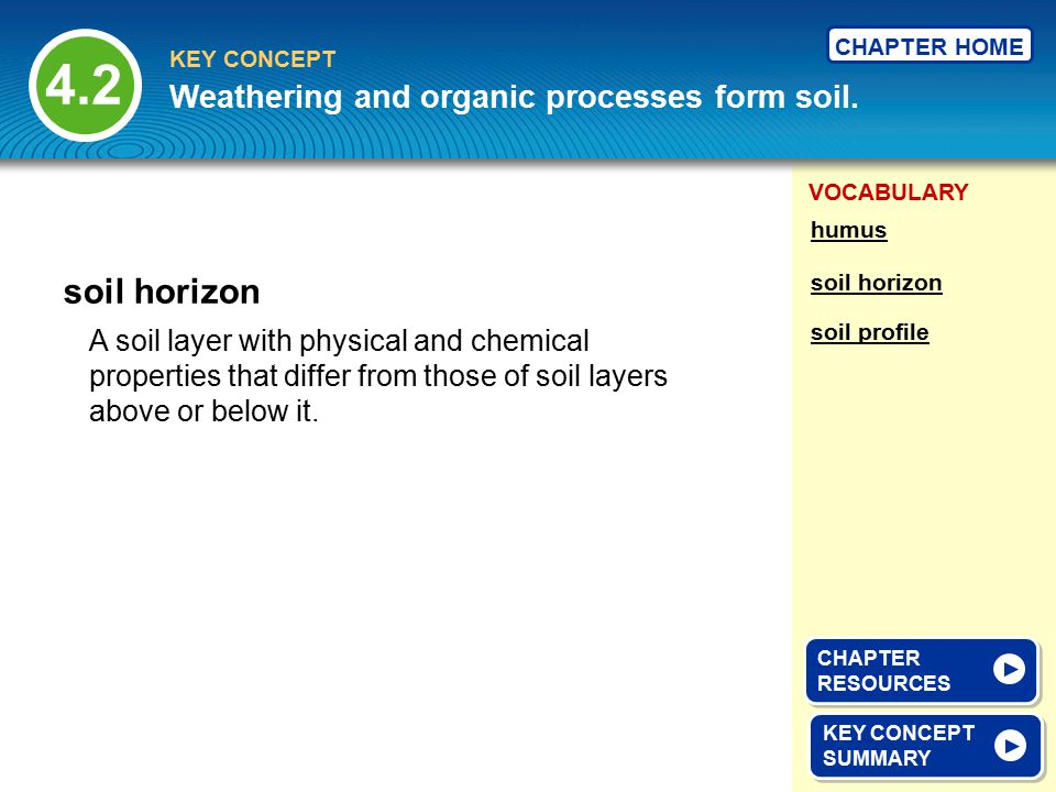 4.2 soil horizon Weathering and organic processes form soil.
