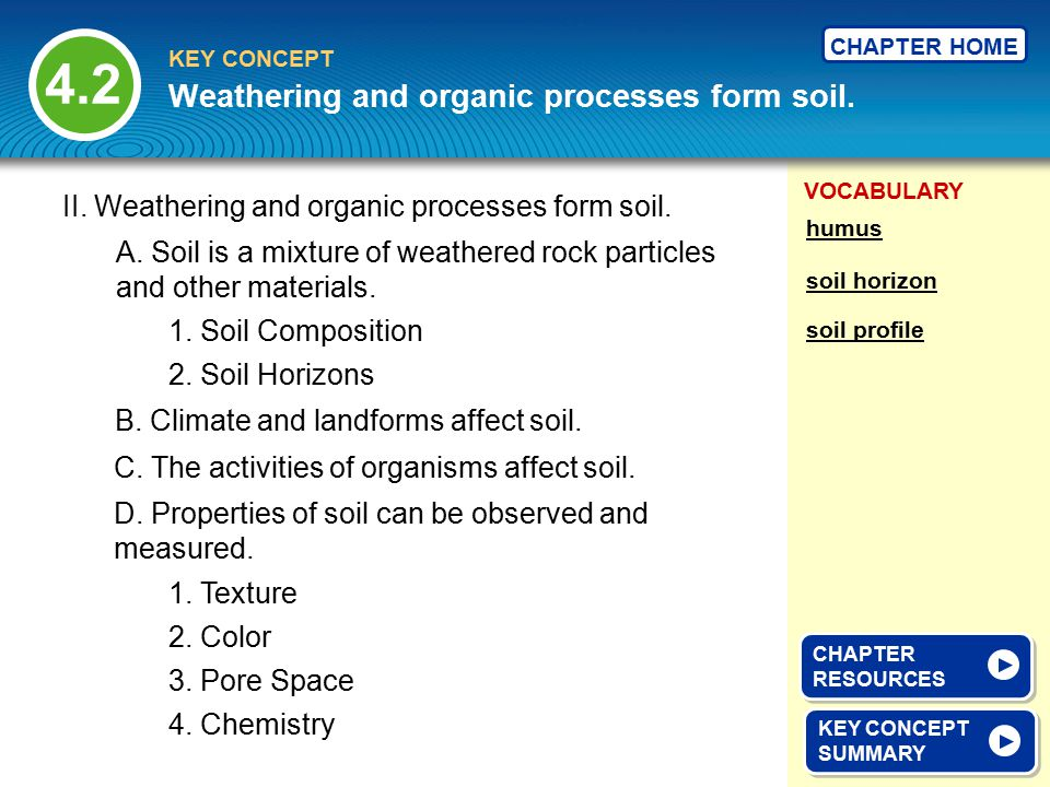 Weathering and organic processes form soil.