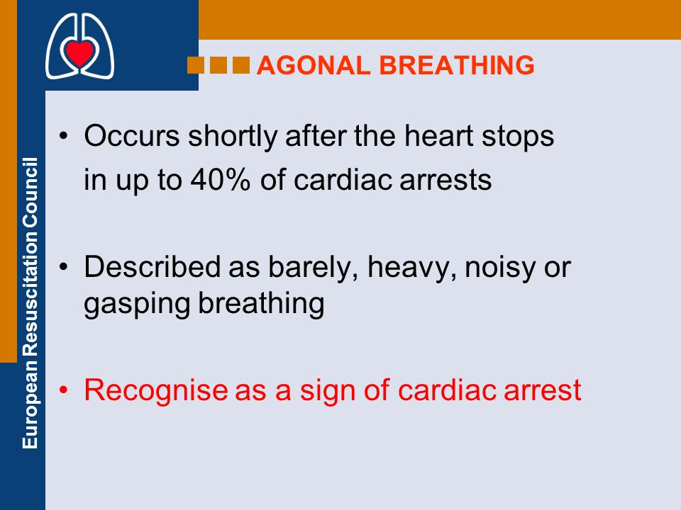 Occurs shortly after the heart stops in up to 40% of cardiac arrests