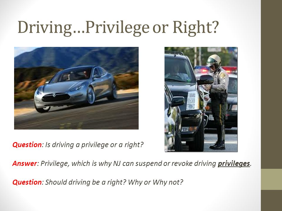 Driving…Privilege or Right