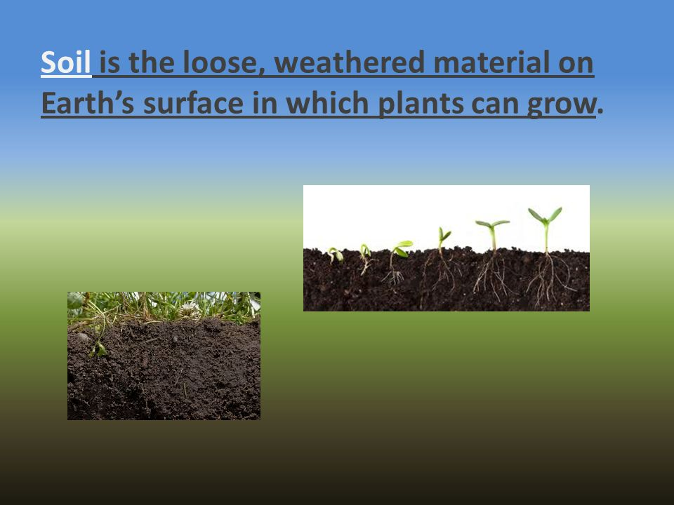 Soil is the loose, weathered material on Earth's surface in which plants can grow.