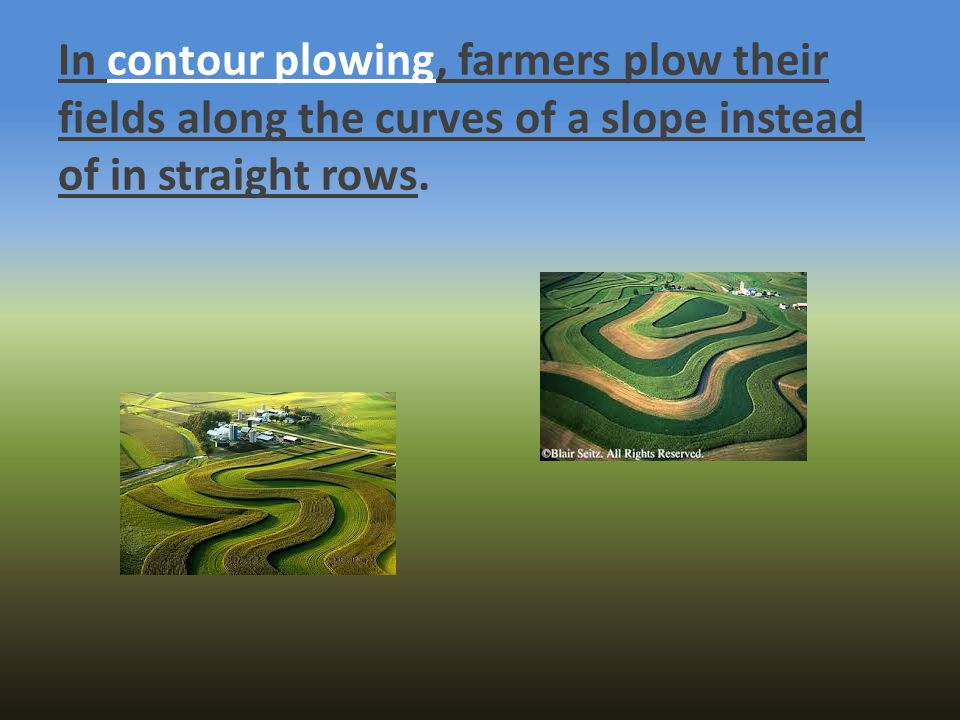 In contour plowing, farmers plow their fields along the curves of a slope instead of in straight rows.
