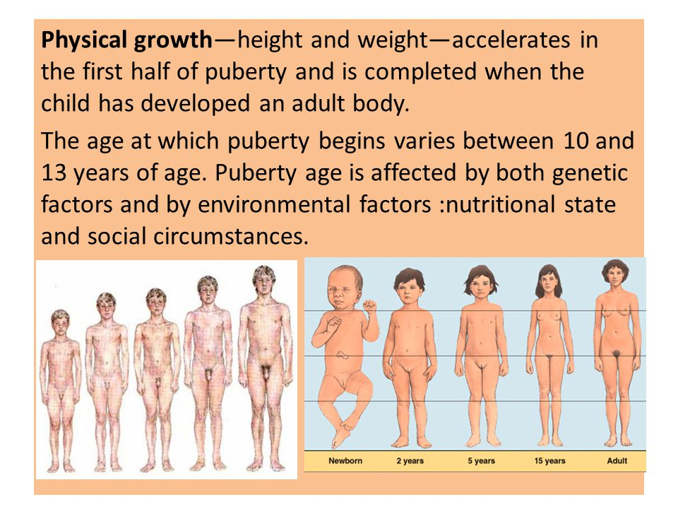 Physical growth—height and weight—accelerates in the first half of puberty  and is