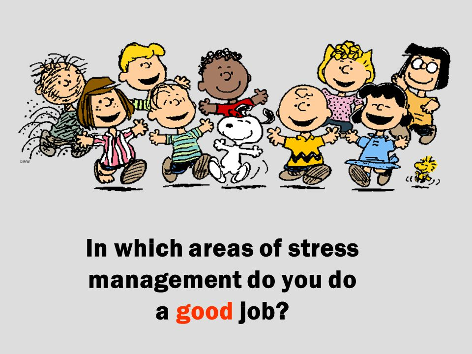 In which areas of stress management do you do a good job