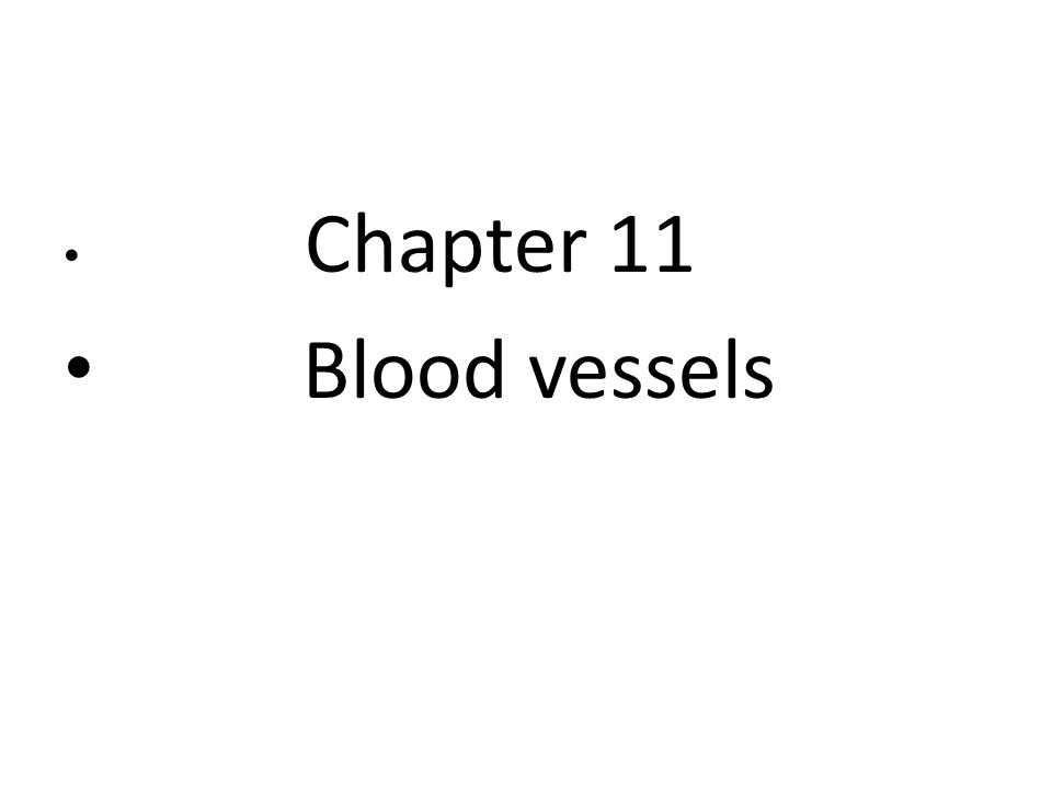 Chapter 11 Blood vessels  - ppt download