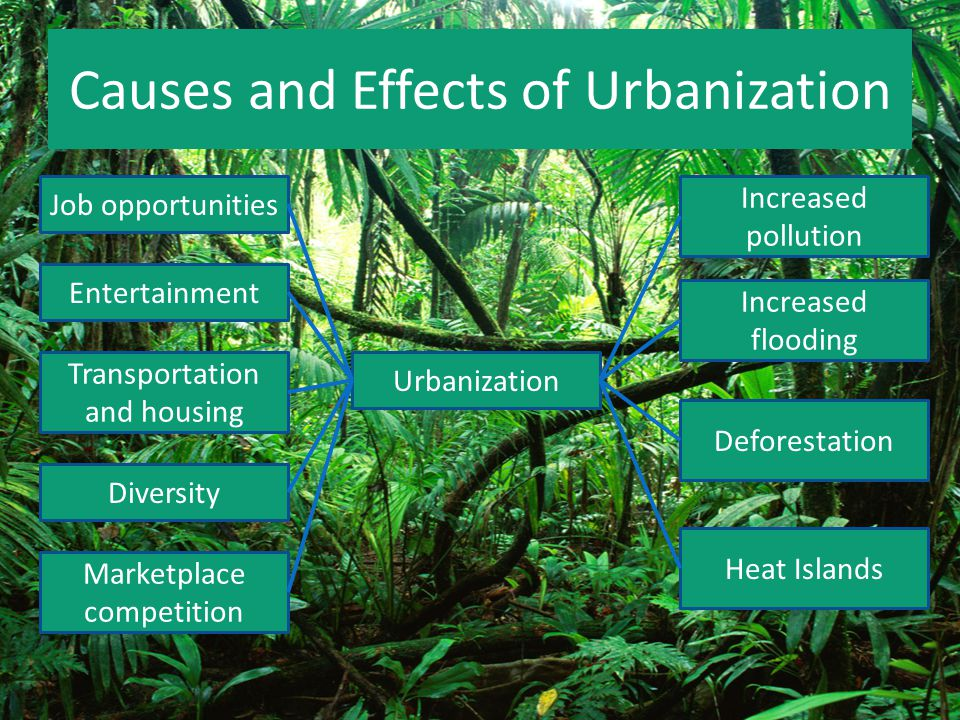 cause and effect urbanization Industrialization leads to urbanization by creating economic growth and job opportunities that draw people to cities urbanization typically begins when a factory or multiple factories are.