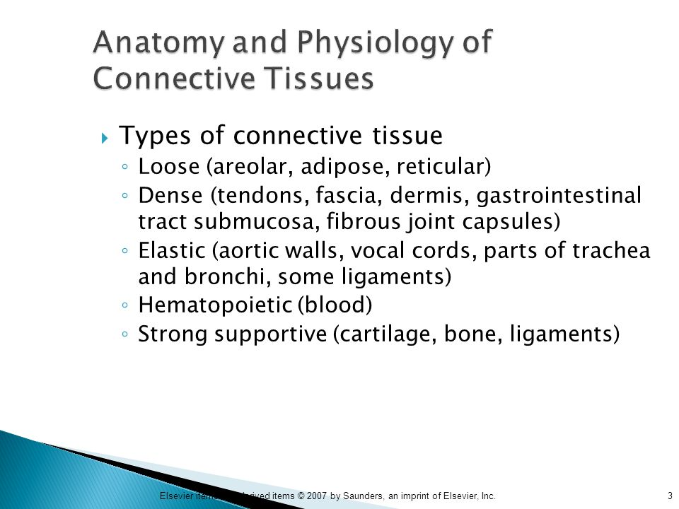 Moderno Anatomy And Physiology Connective Tissue Adorno - Imágenes ...