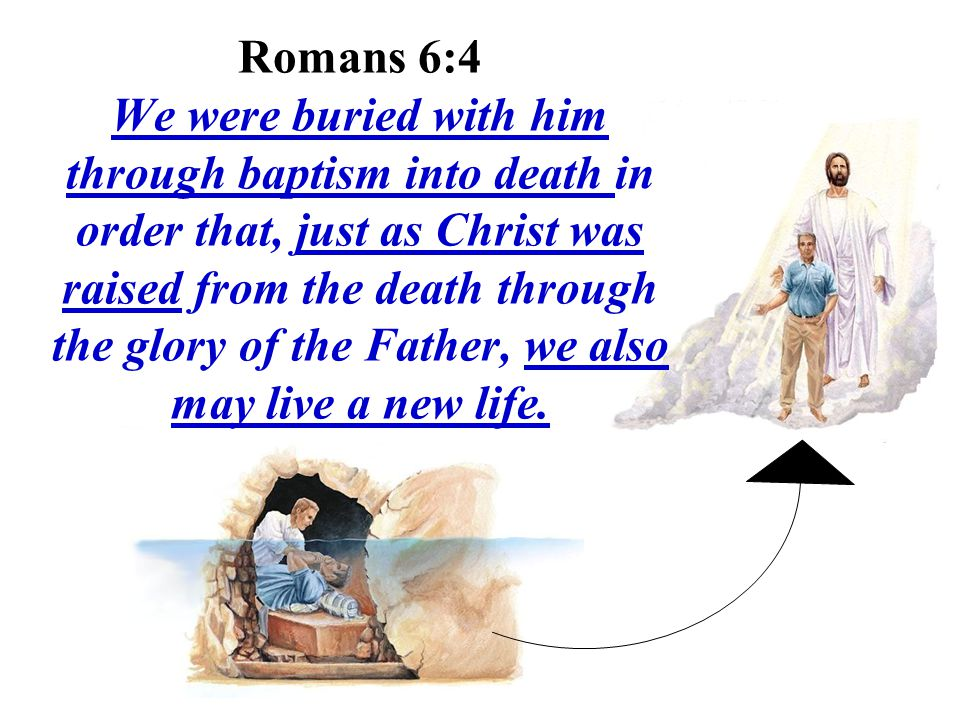 Romans 6:4 We were buried with him through baptism into death in order that, just as Christ was raised from the death through the glory of the Father, we also may live a new life.