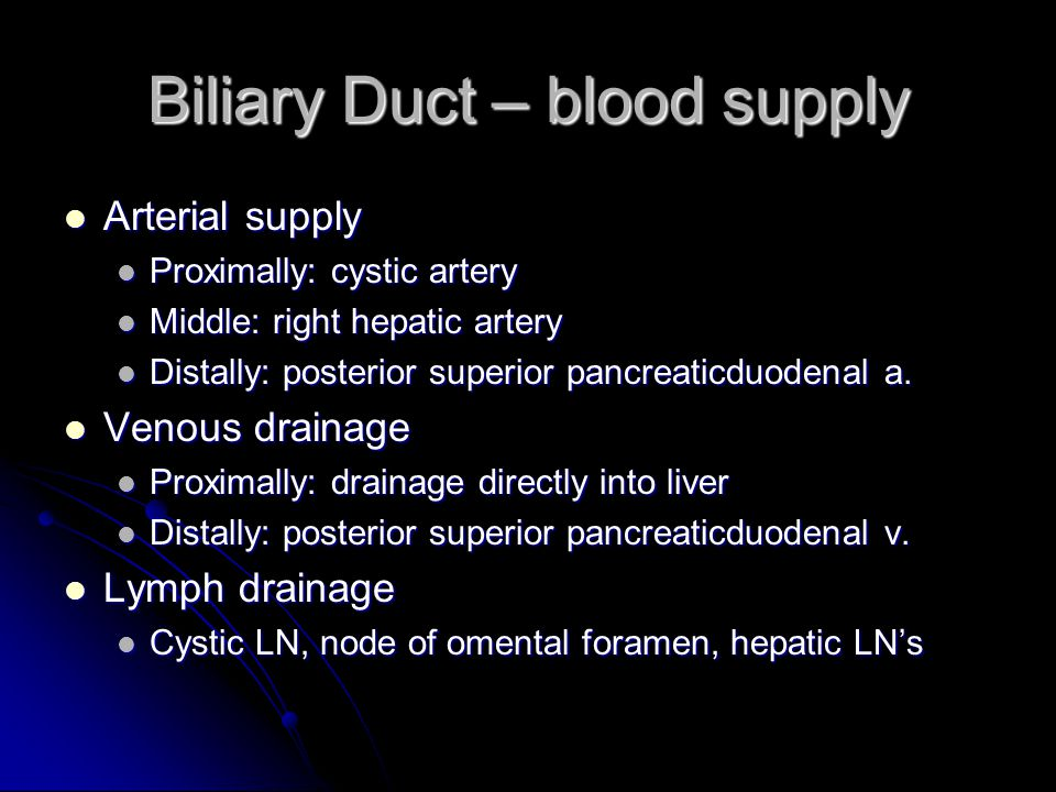 Biliary Duct – blood supply