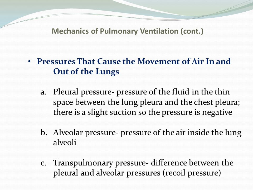 Mechanics of Pulmonary Ventilation (cont.)