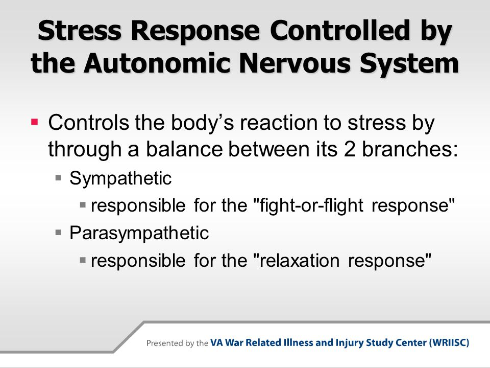 Stress Response Controlled by the Autonomic Nervous System