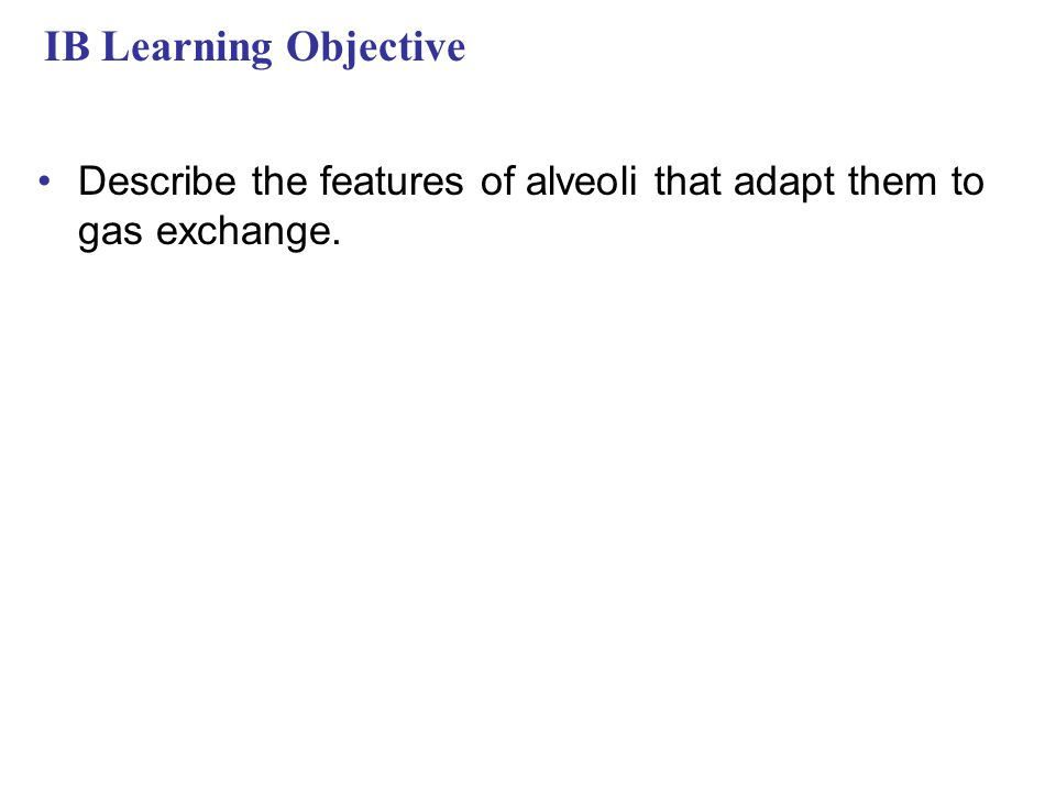 IB Learning Objective Describe the features of alveoli that adapt them to gas exchange.